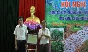 Cấp chứng nhận nhãn hiệu Rau sắng chùa Hương - Hương Sơn: Bảo tồn đặc sản khu du lịch