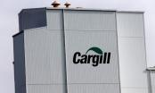 Cargill thu hồi gần 150 tấn thức ăn chăn nuôi có chứa aflatoxin