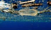 Cảnh báo: Rác thải nhựa trên biển đang giết chết 10% oxi trên Trái Đất