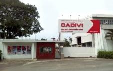 Vì sao Dây Cáp điện Việt Nam (CADIVI) bị xử phạt?
