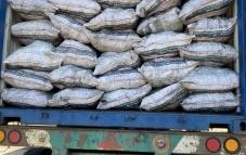 Bình Phước: Phát hiện và bắt giữ 20 tấn than củi nhập lậu từ Campuchia về Việt Nam